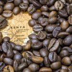 café de malindi, el sueño africano